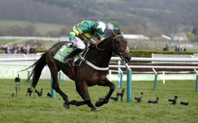 Horse racing: Record sixth Champion Hurdle for trainer Henderson