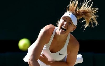 Evert has no issue with Sharapova wildcards