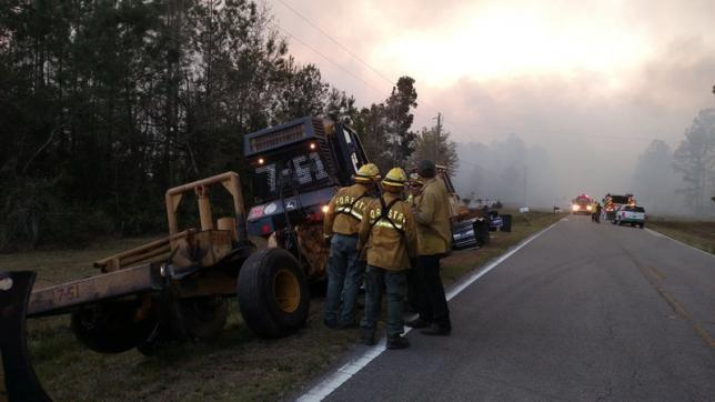 Florida man's book burning sparks wildfire, destroys homes: officials