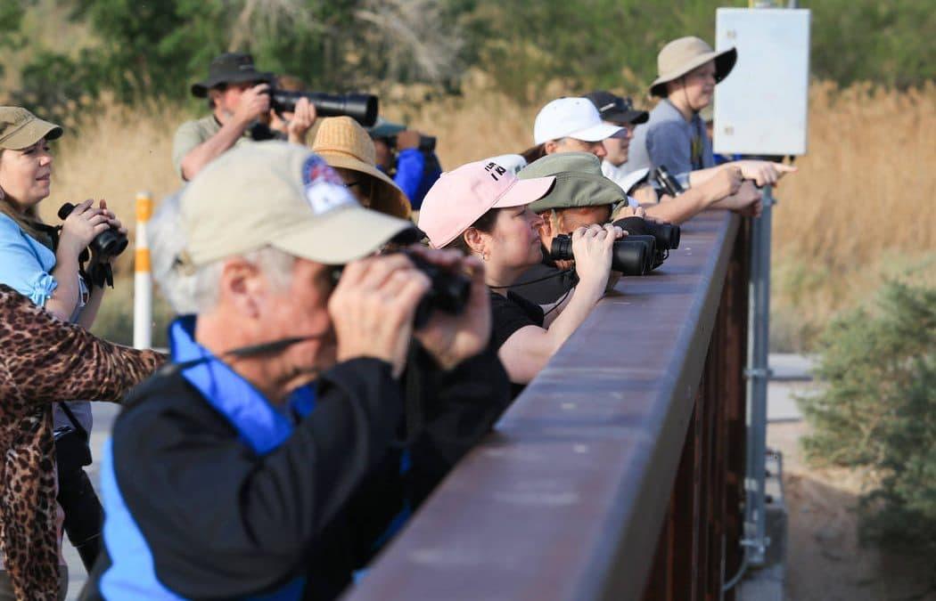 Binoculars in hand, bird watchers enjoy special day at Wetlands Park