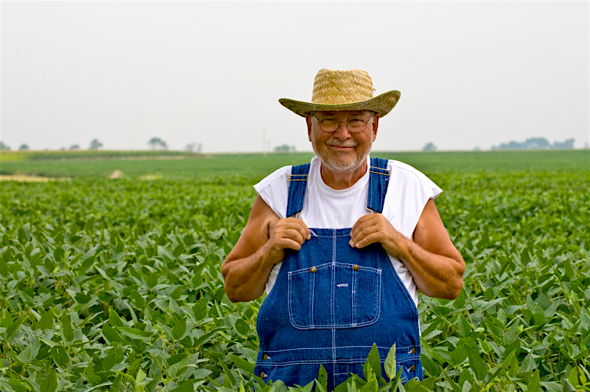 New bill would allow farmers to sue Monsanto if GMO crops invade their property