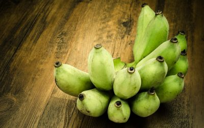 Unpalatable Green Bananas – Follow This Suggestion to Make Them Delicious