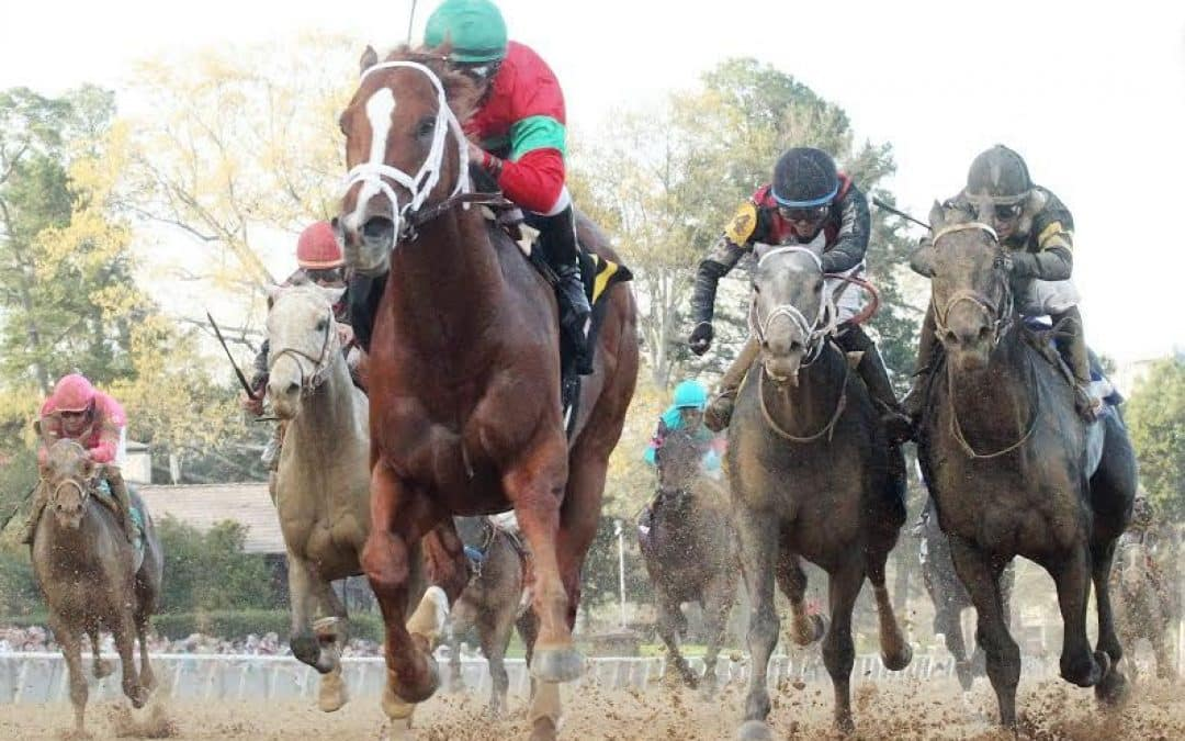 McCraken Leads Top 3-Year-Old Poll; Rebel Winner Malagacy Jumps To Fifth