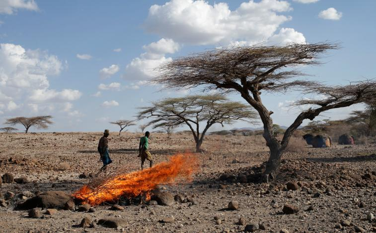 Fearing disease, Kenyans burn animal carcasses as drought deepens
