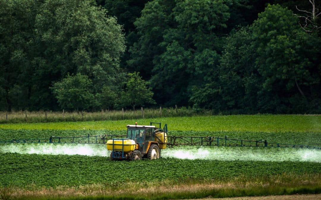 UN experts denounce 'myth' pesticides are necessary to feed the world