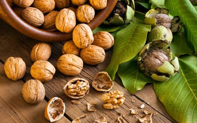 Are walnuts the key to fighting prostate cancer? Researchers think so