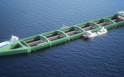 Atlantic salmon farms shift to open seas, trying to shake off lice
