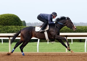 Multiplier Looks to Move Up in Illinois Derby