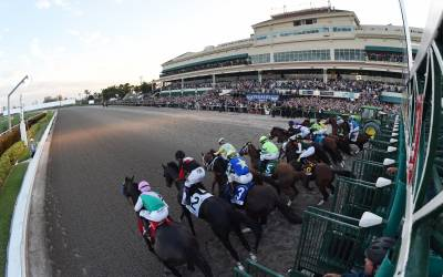 THE PEGASUS WORLD CUP INVITATIONAL RETURNS WITH A NEW RECORD-SETTING $16 MILLION USD PURSE