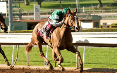 Stellar Wind, Songbird may square off in Beholder Mile