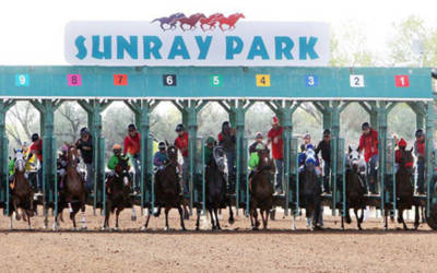 $75,000 Fine, 4-Year Suspension for New Mexico Trainer