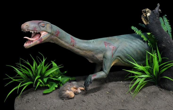 All in the family: dinosaur cousin's look is quite a surprise