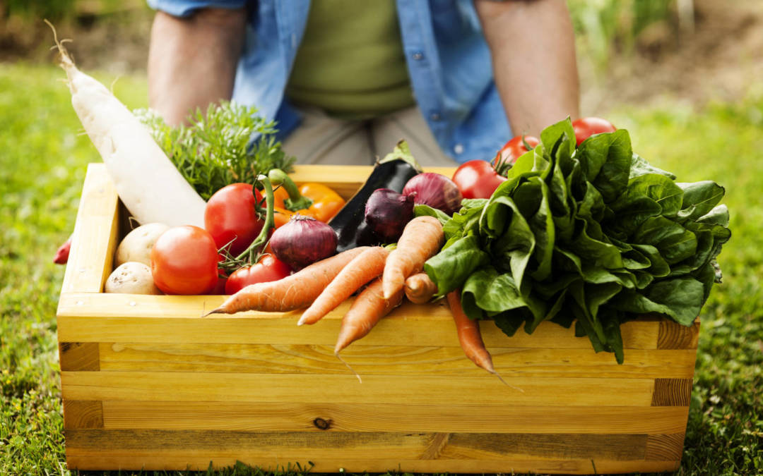 14 fruits and vegetables to start planting in April