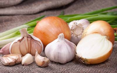 7 disease-fighting foods to incorporate into your eating habits
