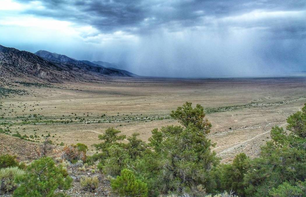 Latest BLM oil and gas lease auction in central Nevada draws protest