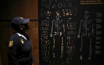 Biggest exhibit of human-like fossils goes on display in South Africa