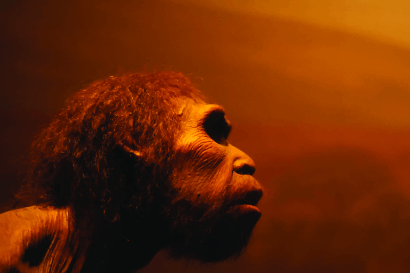 Were Neanderthals in California the first Americans?