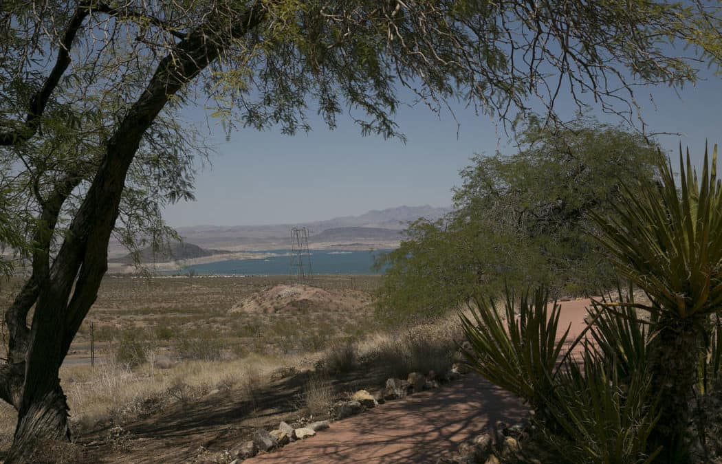 Wetlands Trail reopens at Lake Mead after three-year closure