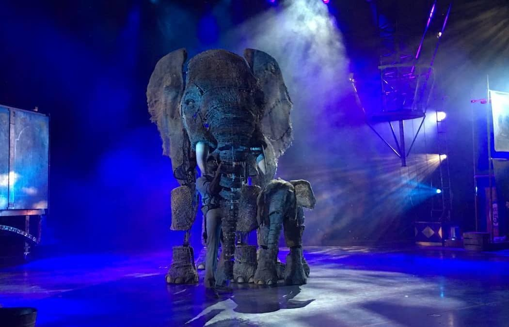 'Circus 1903' gets real with faux elephants