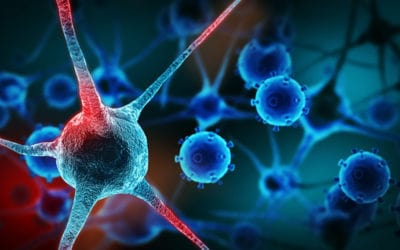 """Chemotherapy obsolete? """"Ceramide nanoliposome"""" uses liposomal delivery to target and kill cancer cells without harming healthy cells"""