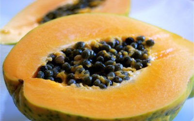 U.S. CDC says salmonella outbreak linked to papayas sickens 47