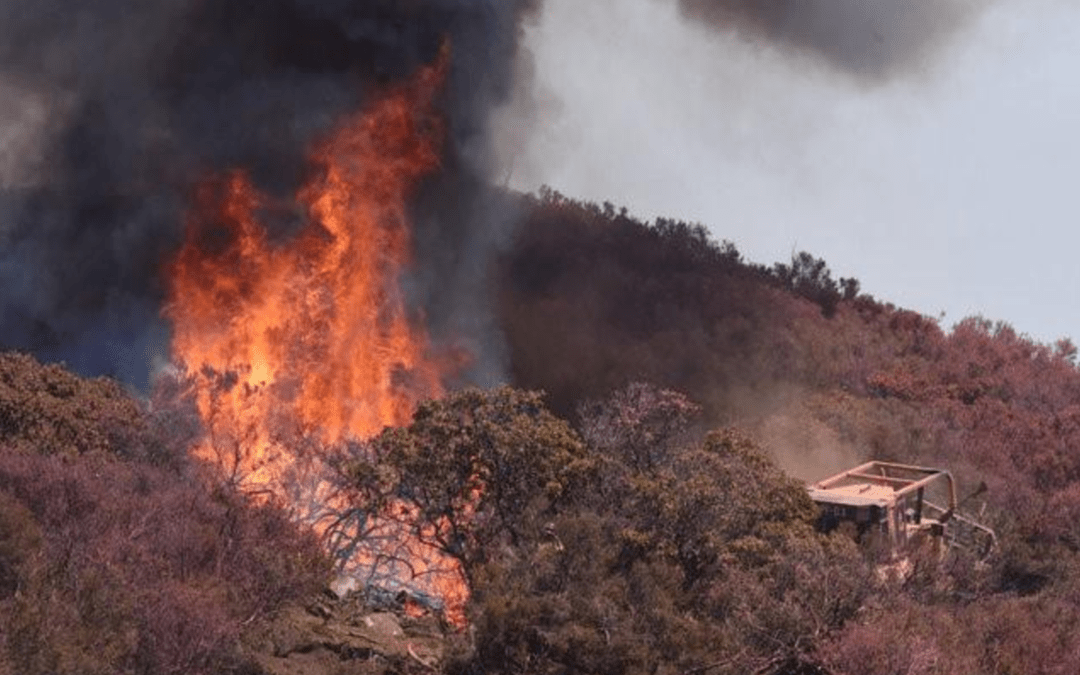 Central California wildfire nearly 50 percent contained as hot, dry conditions persist