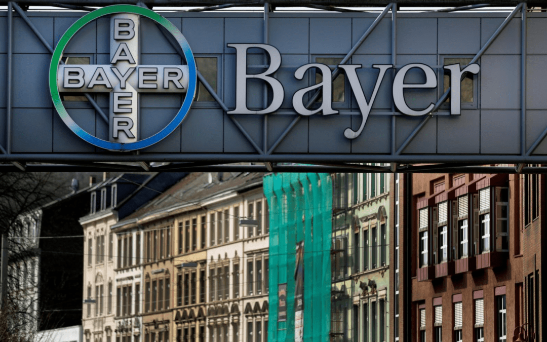 Campaign group Avaaz calls on EU to block Bayer's Monsanto deal