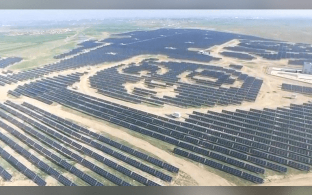 Paw power: China plans 100 panda-shaped solar plants on new Silk Road