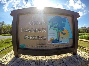 St. Lucie County's Latest Preserve: Citrus Hammock Open to the Public