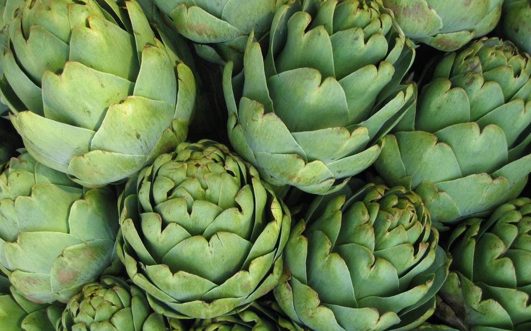 Artichoke extract found to lower high cholesterol and protect the liver from alcohol damage