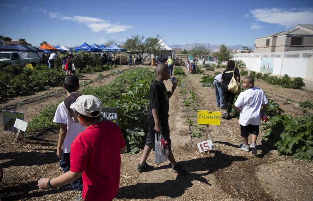 Garden festival in Las Vegas offers respite from difficult week