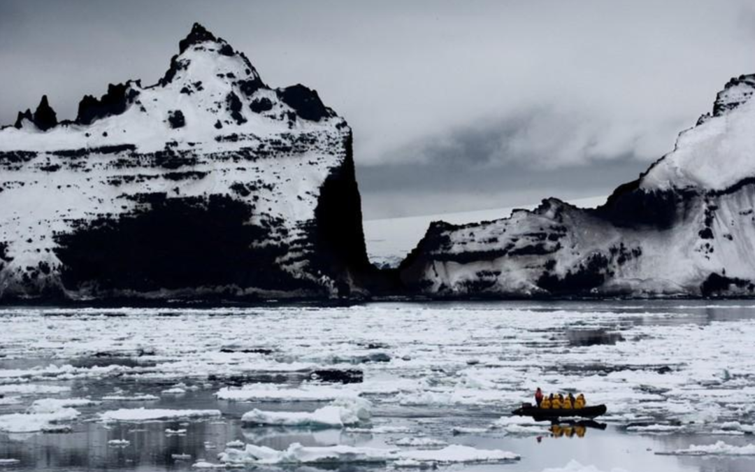 Bid to expand Antarctic marine protection area fails: conservationist