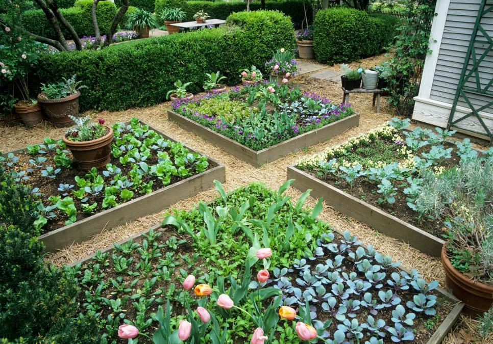 The benefits of square foot gardening: Less weeding, high yields, consistent results, and more