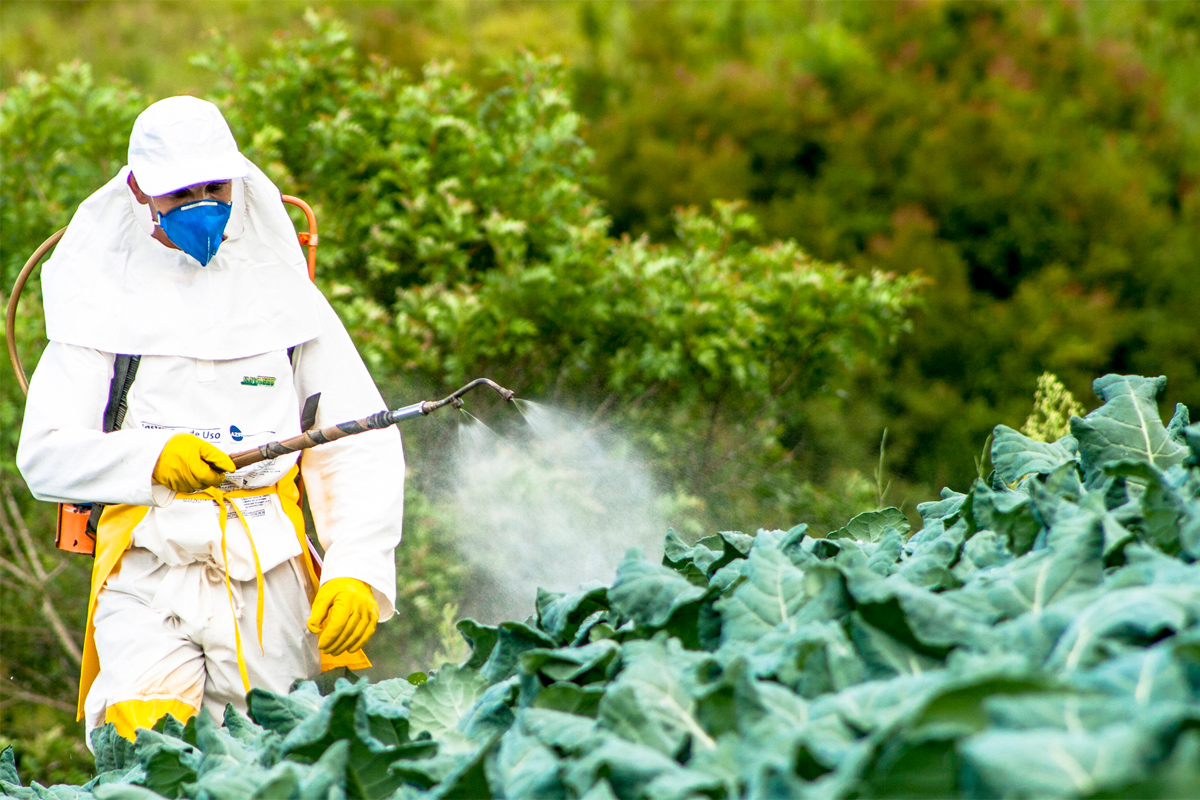 A Wide Open Door For Pesticide Lobbyists At The