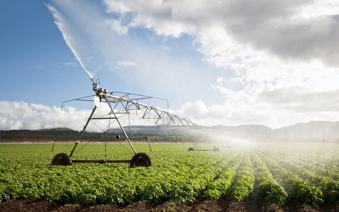 Big Ag is ruining what ground water they don't take: Excess nitrogen reaching dangerous levels, study finds