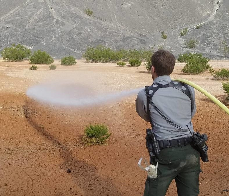 Graffiti in active volcano at Death Valley erased by park service