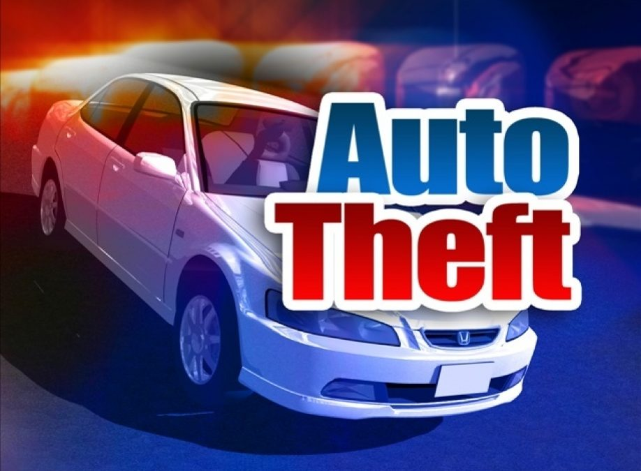 Car Theft Charged in Circuit Court