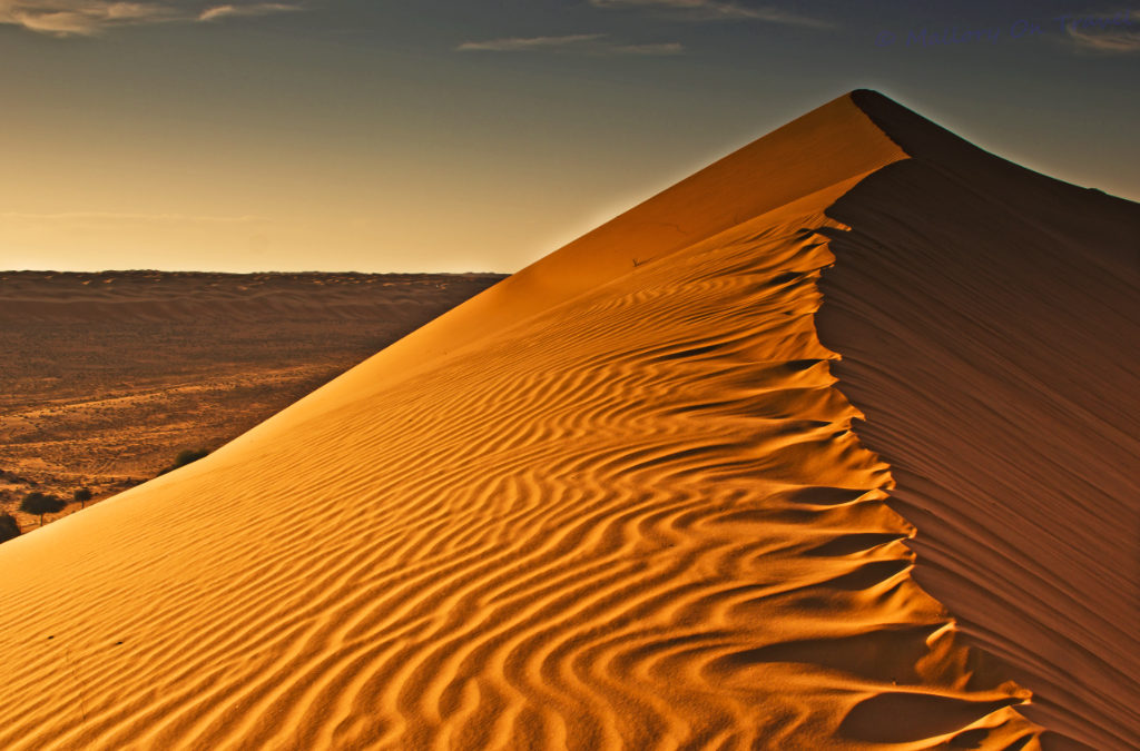 Shifting Sands: What is changing in Saudi Arabia?