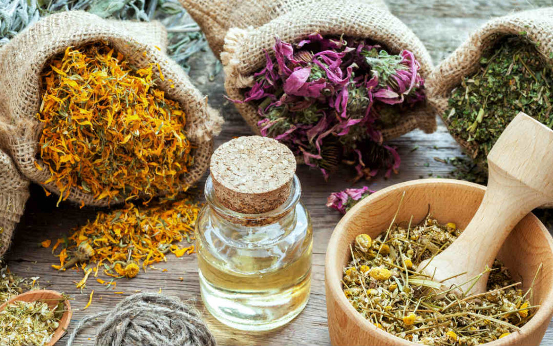 """""""Adapt"""" to stress with these 5 adaptogenic herbs"""