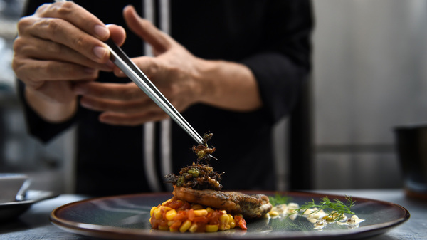 High Prices for Haute Cuisine in France This Christmas