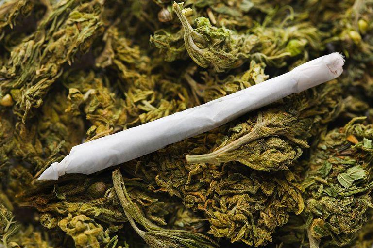 Nevada's Marijuana Take for Education is Hardly a Windfall