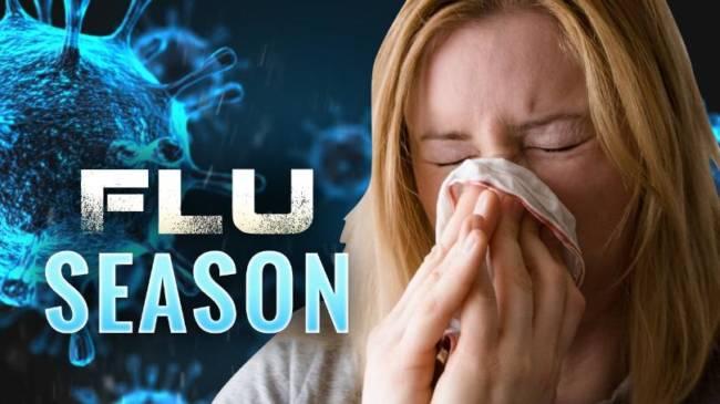 Flu Causing Havoc in Some Area Schools