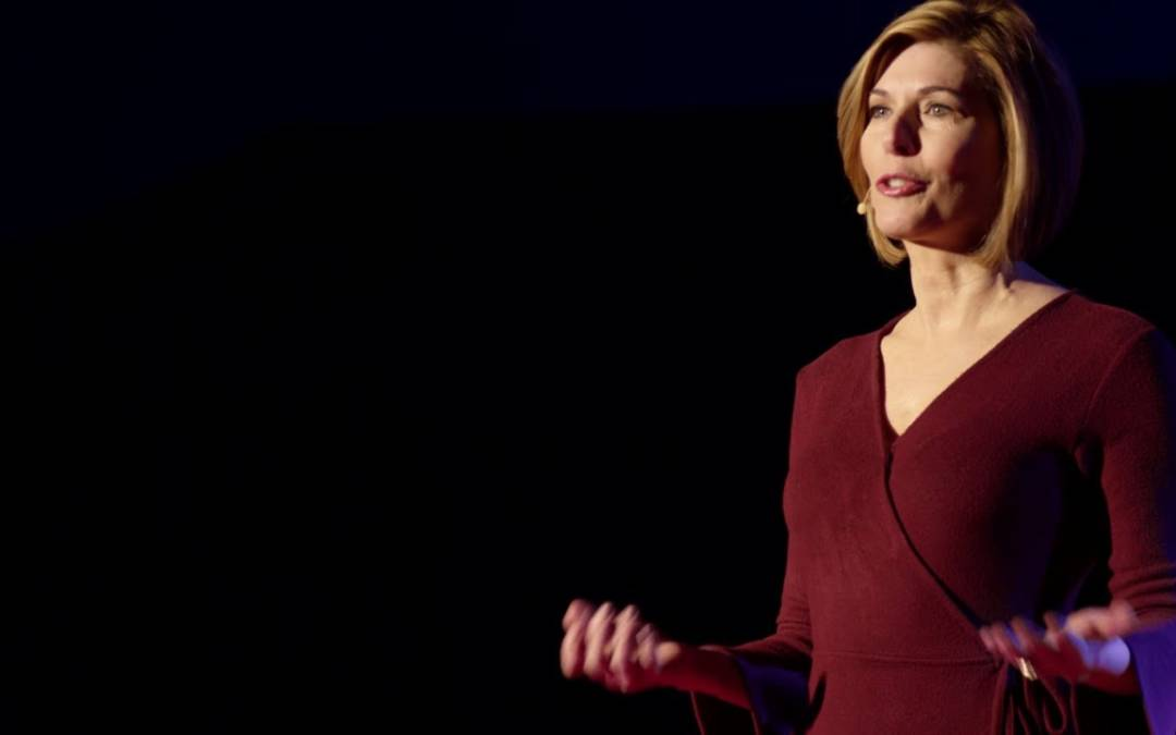 Sharyl Attkisson Explains the Origins of the 2016 'fake News' Narrative in Tedx Talk