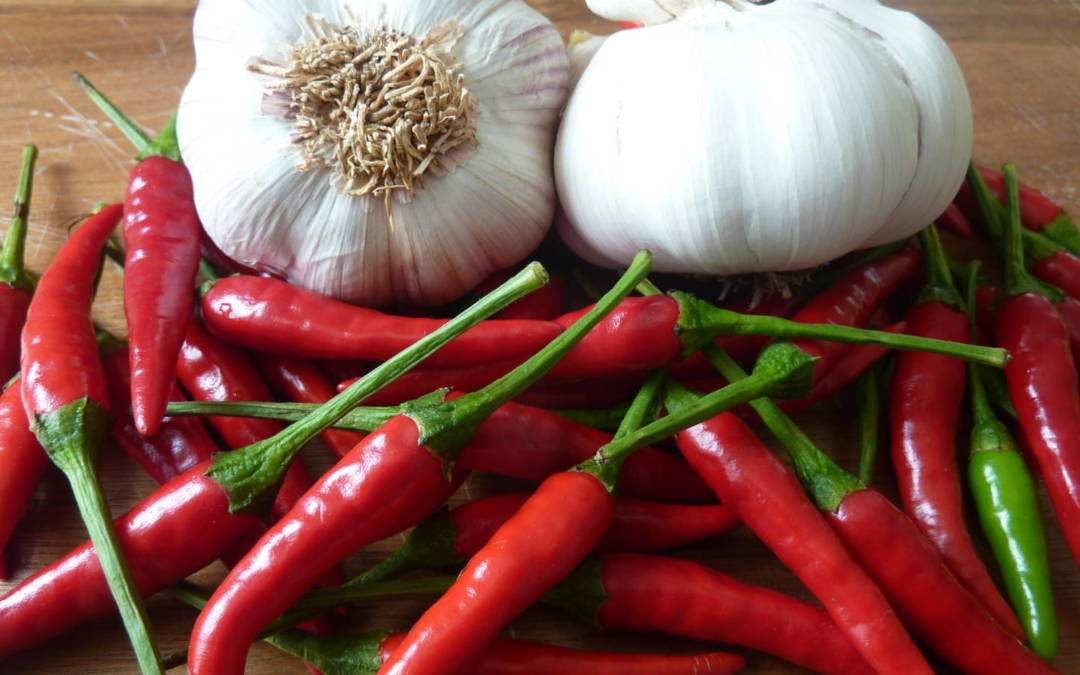 Natural Antiseptics to Fight Infections