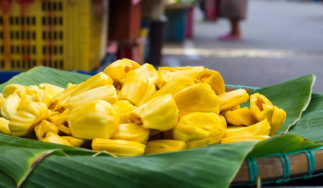 Sustainable and easy to grow, jack fruit can help provide food independence to poor cultures