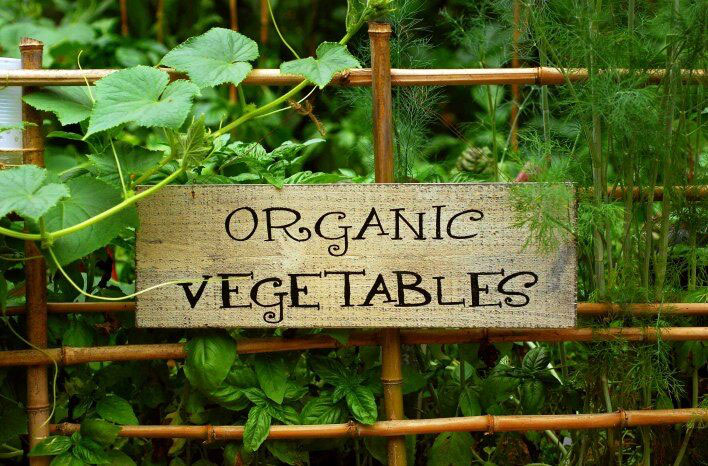 "Learn how to ""grow half of your own food"" with sustainable, organic methods that can be practiced anywhere"