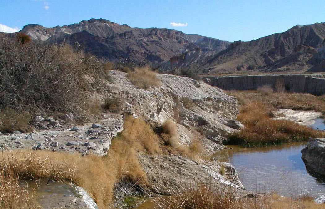 Lawsuit seeks protections for 8 rivers, including Amargosa