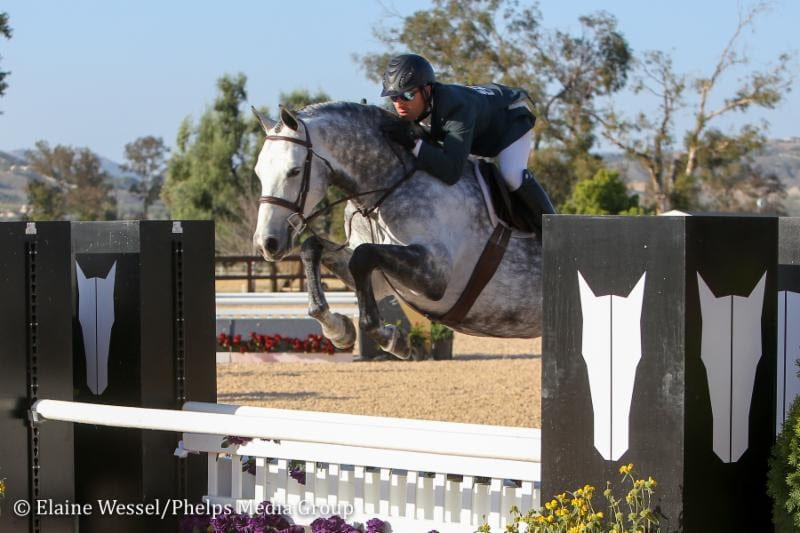 Nicolas Haness and Screenplay Capture $10,000 Brookway Stables Hunter Derby
