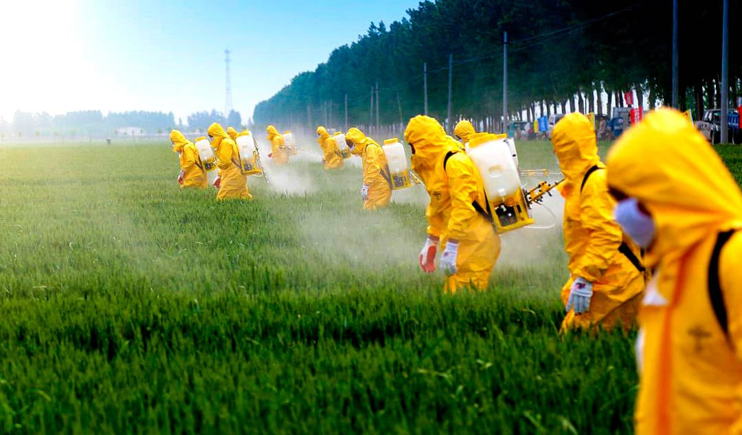 First-ever birth study finds 93% of pregnant women have detectable levels of herbicide in their bodies