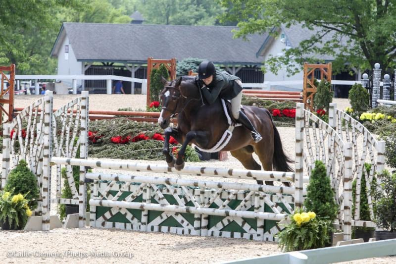 Stephanie Danhakl and Enough Said Steal the Grand Amateur-Owner Hunter Champion